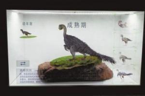 В Китай вернулись останки  динозавра «детеныш Луи»