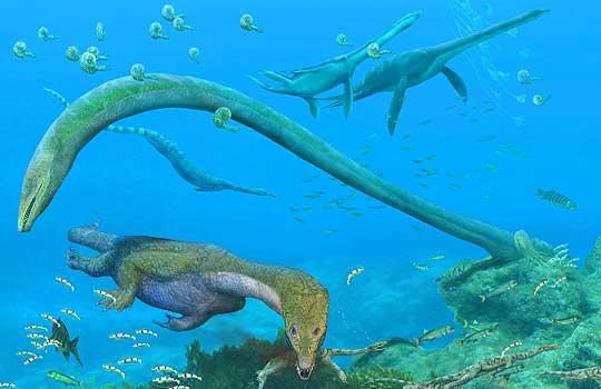 Самые интересные палеонтологические находки этого года в Китае