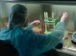 Китай выделил еще 16 млн долларов на борьбу с эболой