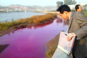 Состояние воды в Хуанхэ остается катастрофическим