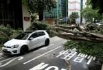 Тайфуна «Нида» обрушился на Китай: Гонконгская биржа закрыта, авиарейсы отменены