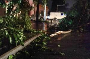 В Южном Китае свирепствует тайфун «Миринаэ»