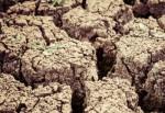 На северо-востоке Китая сельхозугодия страдают из-за сильной засухи