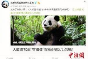 смерть панды