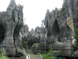 вход в каменный лес