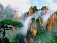 загадочный каменный лес