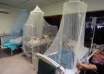 Эпидемия лихорадки денге начинается в Гуанчжоу