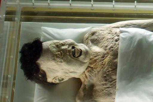 О сыре и мумиях