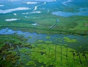 Самое крупное озеро Китая быстро мелеет