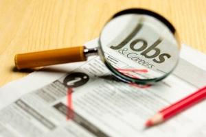 статистика новых рабочих мест