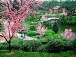 Усадьба Чжоучженьюань, или Сад Скромного Чиновника
