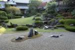 Искусство Китая – садоводство. Часть 2