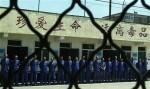 Задержан второй из преступников, убивших охранника в Харбине