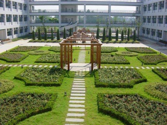 ТОП 5 китайских университетов
