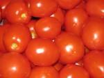 14-я Китайская ярмарка органических продуктов началась в Цицикаре