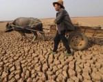 Продолжается засуха в автономном районе Внутренняя Монголия