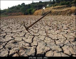 Провинция Хэнань страдает от продолжительной засухи